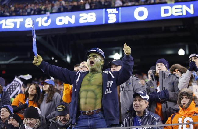 A Seattle Seahawks fan cheers as they play the Denver Broncos in the NFL Super Bowl XLVIII football game in East Rutherford, New Jersey, February 2, 2014. (Reuters)