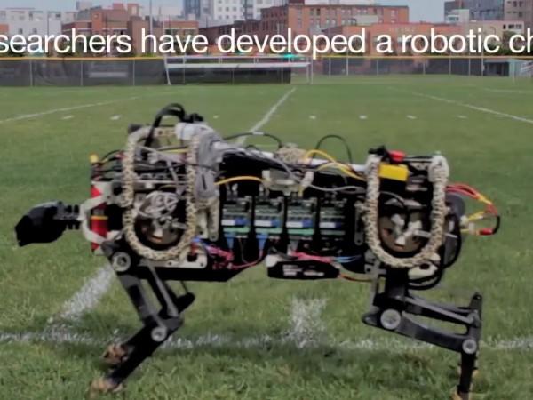 MIT's Robot Cheetah Can Run, Jump [Video]