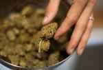 Los Angeles To Not Enforce Ban On Marijuana Dispensaries