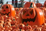 Halloween Shopping Begins In China