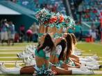 Houston Texans v Miami Dolphins