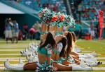 Houston Texans v Miami Dolphins