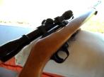 .22-caliber semi automatic long rifle