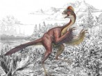 Scientists Discover New Species Of Dinosaur